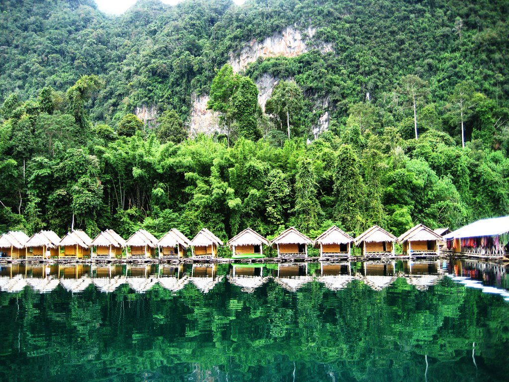 TOUR KHAO SOK LAKE FOREST