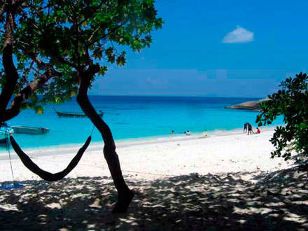 similan one day tour